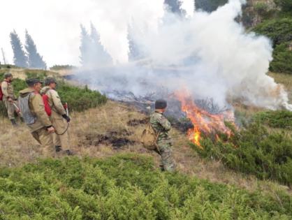 Степной пожар, бушевавший 12 дней в Алматинской области, ликвидирован