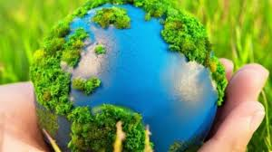 Большинство китайцев готовы добровольно защищать экологию - опрос