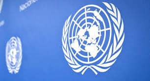 В ООН осудили действия наемников Хафтара против мирного населения Ливии