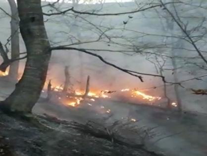 В Азербайджане в результате обстрела армянскими ВС произошли пожары в лесах и на гражданских объектах (ФОТО)