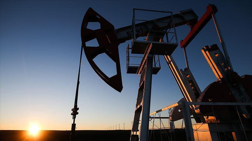 Цена на нефть марки Brent превысила $44